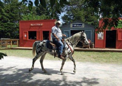 ctf2011-horse